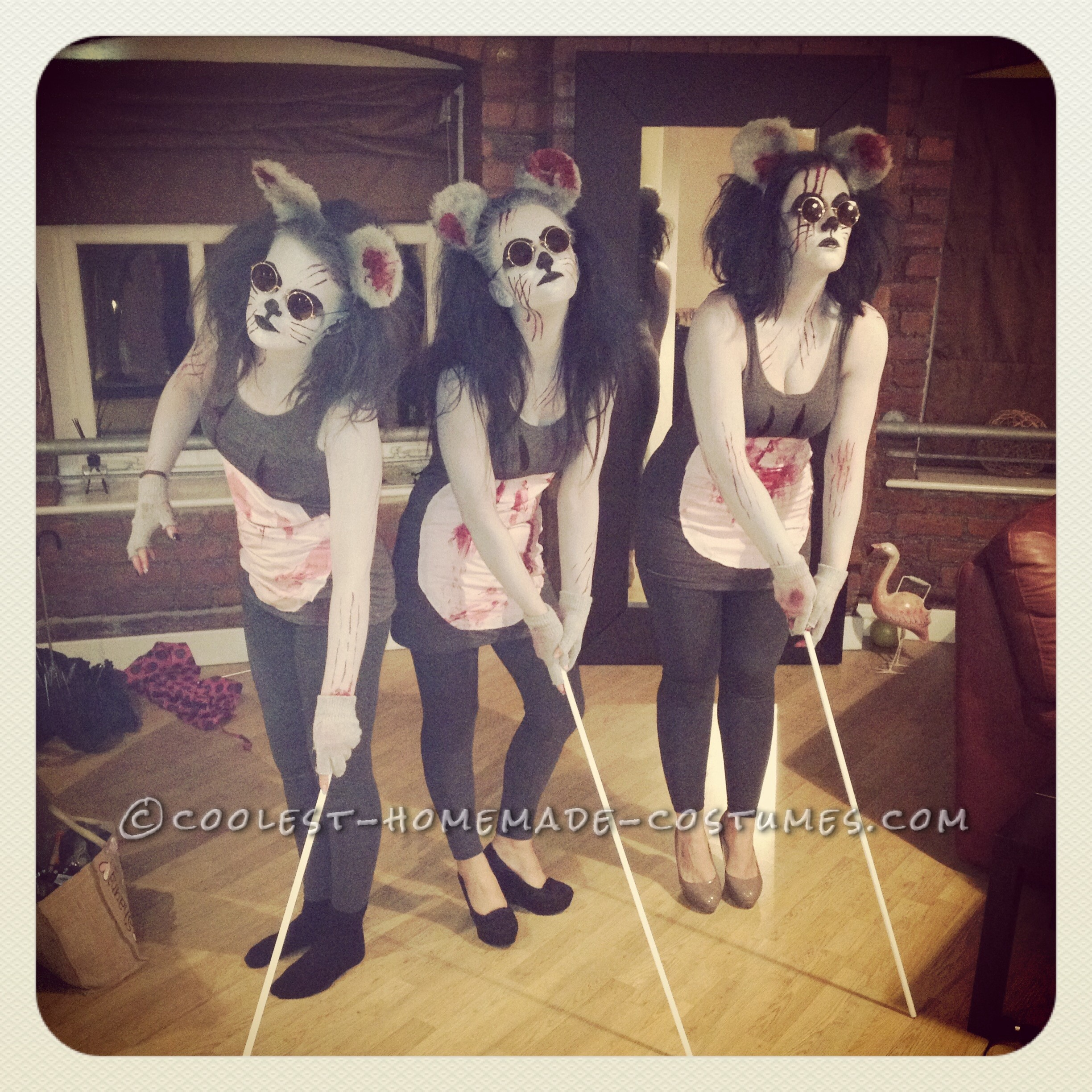 Three Blind Mice Makeup Saubhaya Makeup