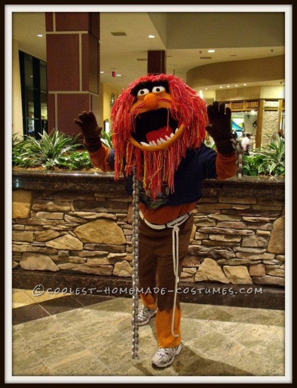 Cool DIY Animal from Muppets Costume: I made the head from paper mache, felt, cardboard, mountains of yarn, plastic, foam a hard hat, and lots of hot glue! I fashioned his outfit from thri