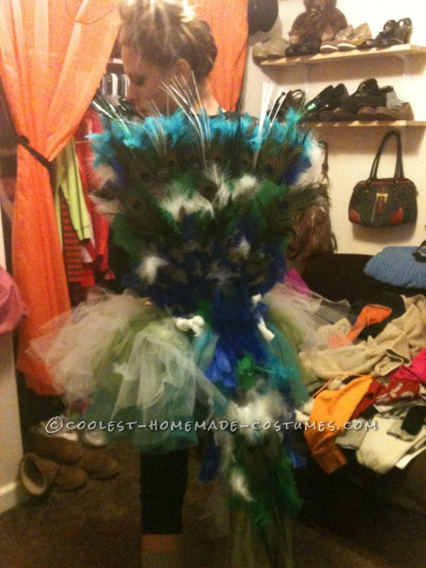 Homemade Peacock Costume with a Creative Twist