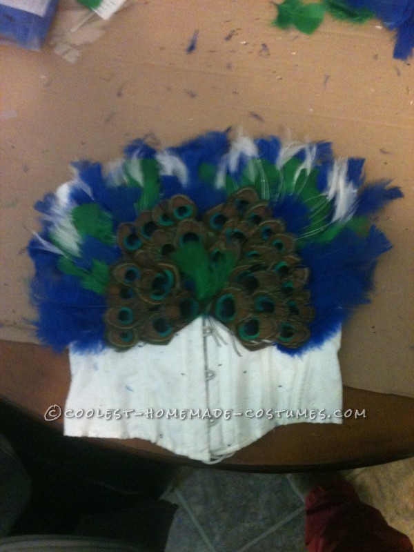 the top befoer i covered the rest with white feathers