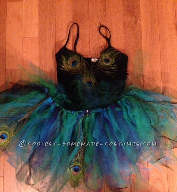 Cool Peacock Tutu and Costume - 1