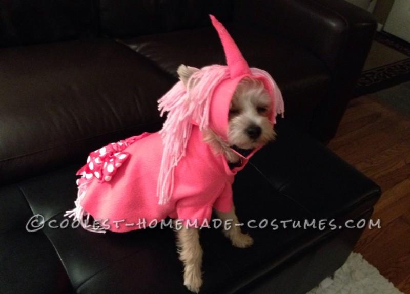 Louie having his final unicorn costume fitting