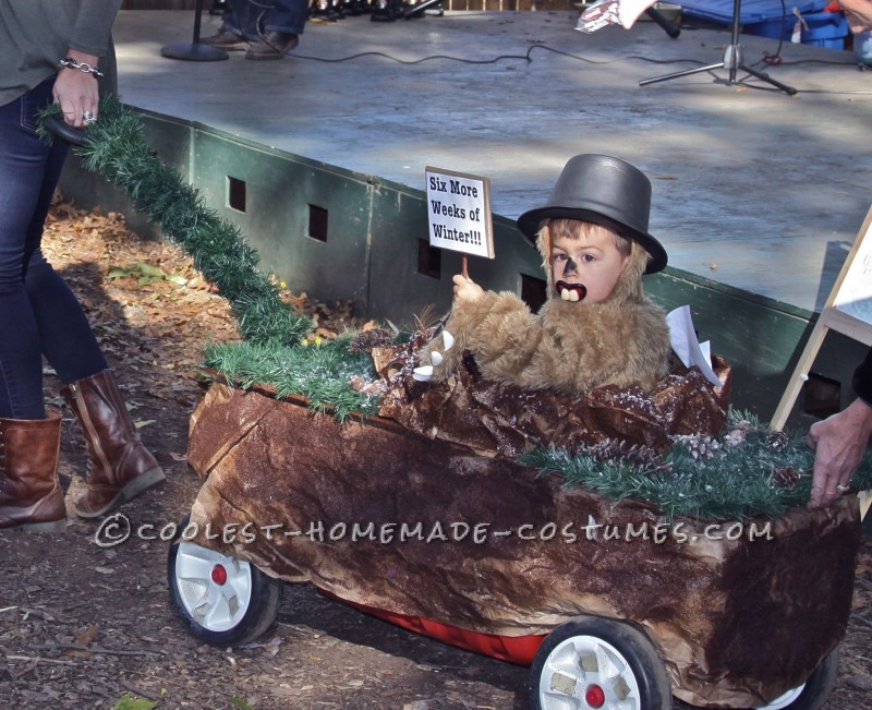 Punxsutawney Phil Groundhog Costume for a Toddler - 1