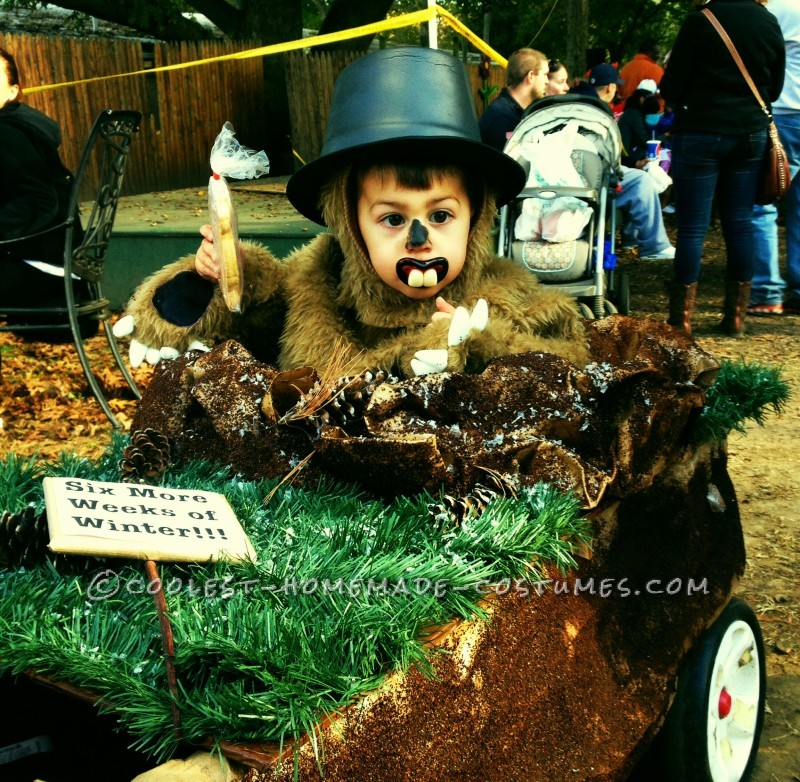 Punxsutawney Phil Groundhog Costume for a Toddler