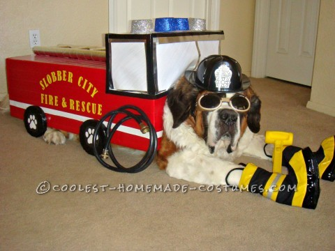 Fire Pawtrol Costume for Snowplow our Dog