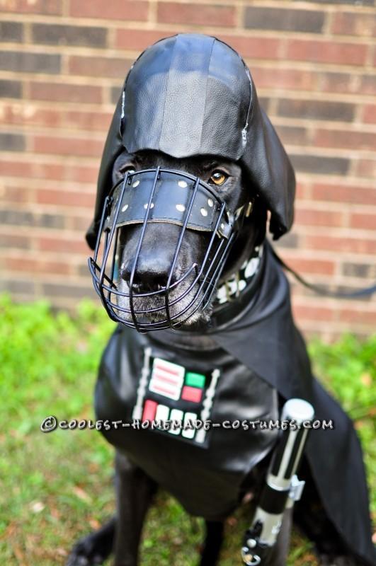 Darth Vader Diego