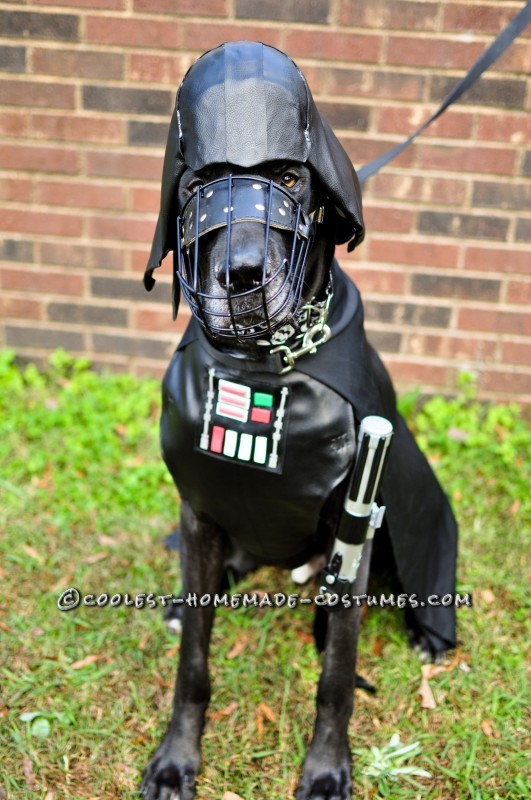 Star Wars Dog Costumes: The Canines Strike Back - 3