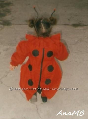 Cuttest Homemade Ladybug Toddler Costume