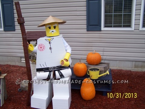 The Happiest Ninjago Sensa Wu Costume