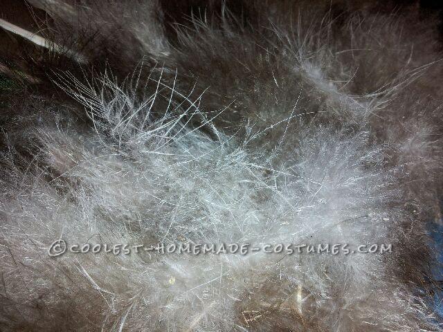 Fuzzy Feathers