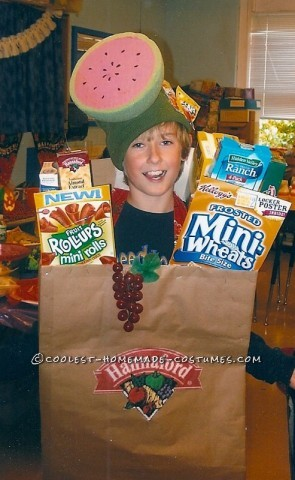 Creative Grocery Bag Costume Idea
