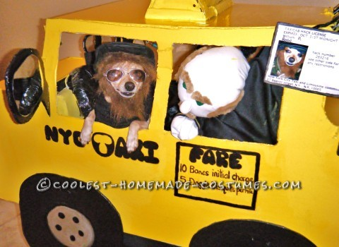 Chihuahua Halloween Costume: William the NYC Taxi Driver