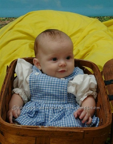 Baby Dorothy Costume from The Wizard of Oz
