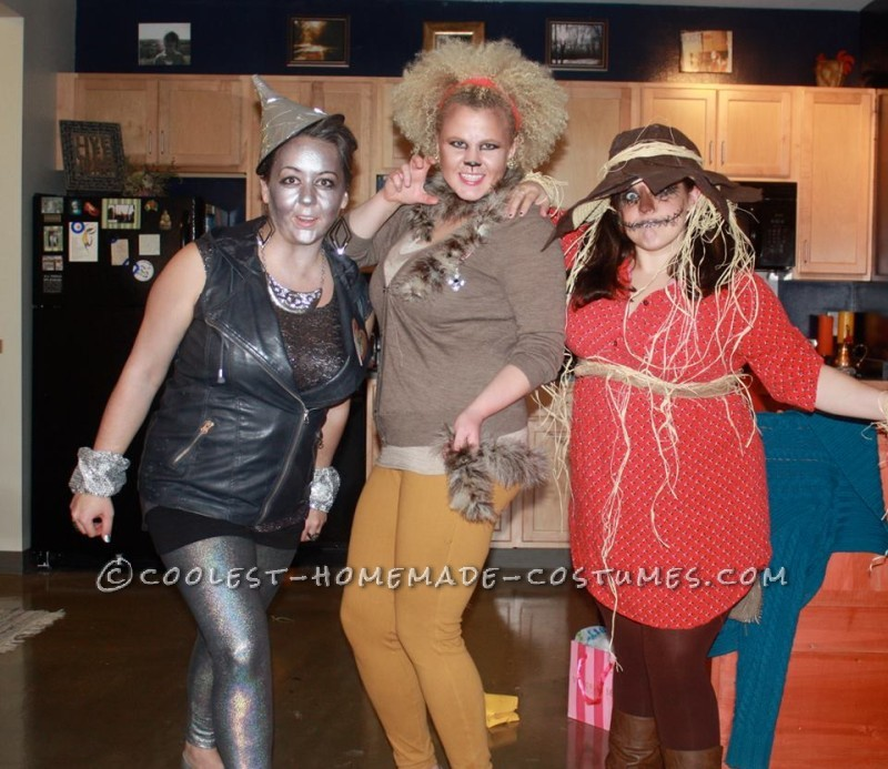 Wizard of Oz Group Costume with Clothes You Can Wear Again - 2