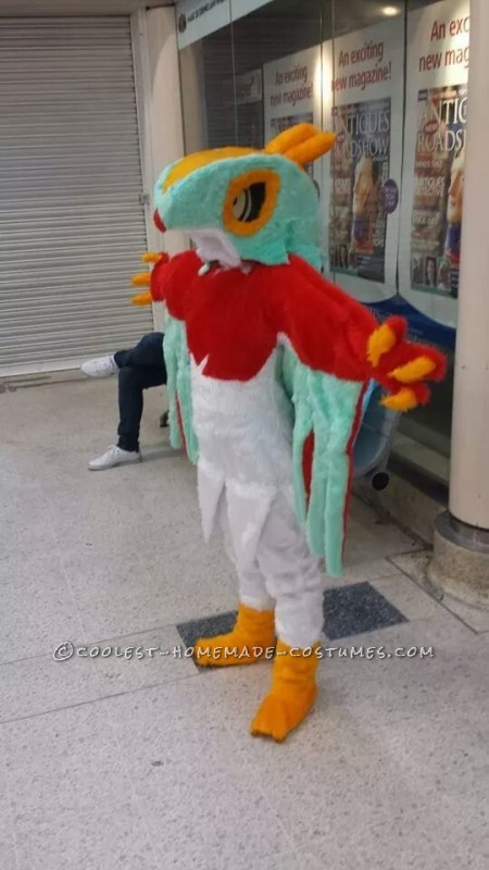 Front of Hawlucha