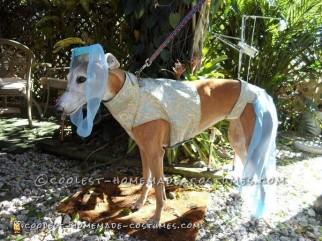 Coolest Greyhound I Dream of Jeannie Costume