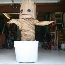 Groovin' Groot Costume