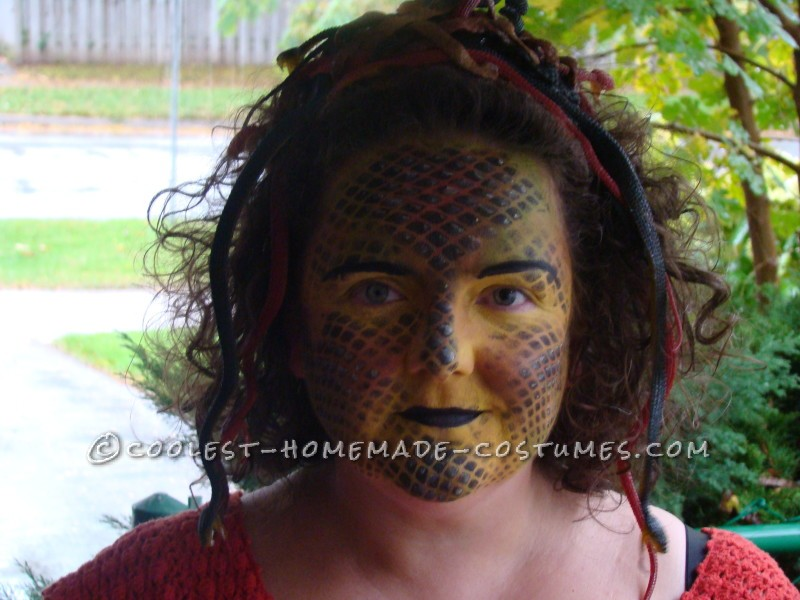 Cool and Creepy Homemade Medusa Costume
