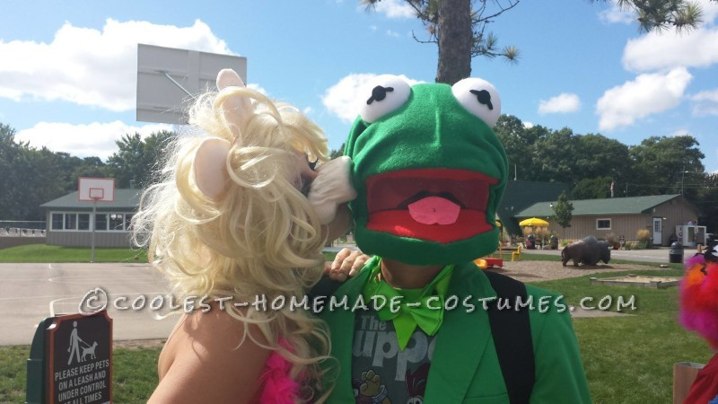 Coolest Muppet Family Costumes - 1