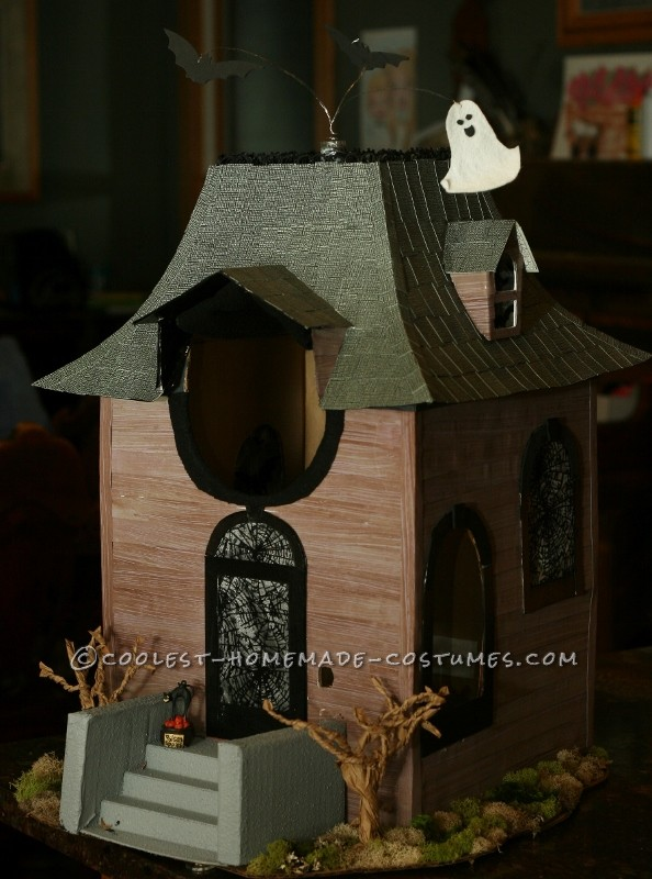 Cool Homemade Costume for Kids: Haunted House - 1