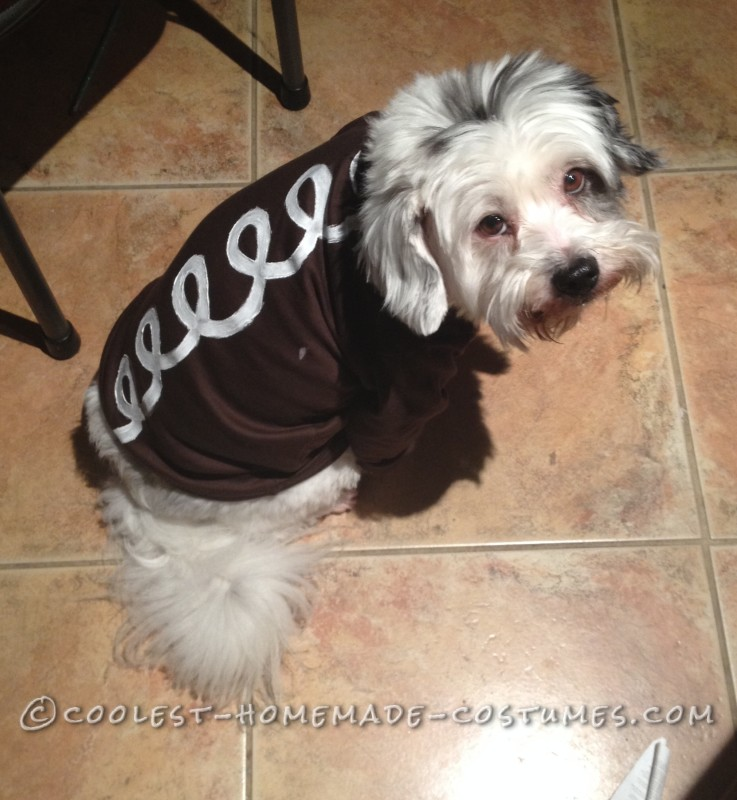 Hostess Cupcake Dog Costume