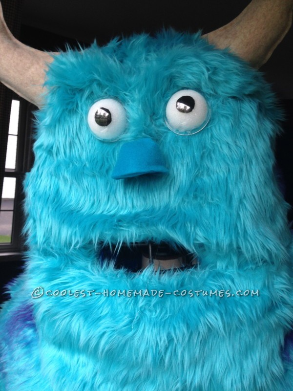 Monsters Inc Family Costume - 5