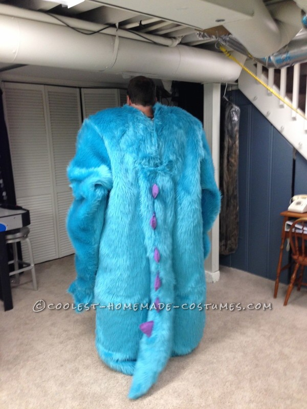 Monsters Inc Family Costume - 6