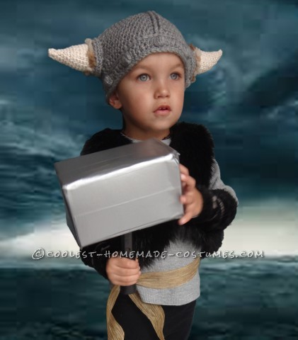 Cool Toddler Viking Costume