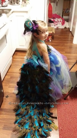 Lovely Homemade Toddler Peacock Costume