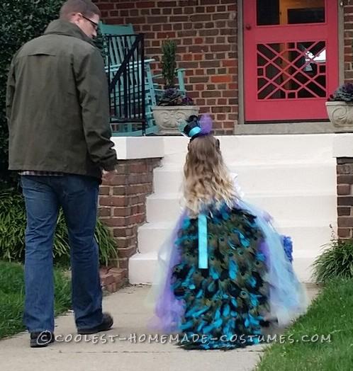 Lovely Homemade Toddler Peacock Costume - 7