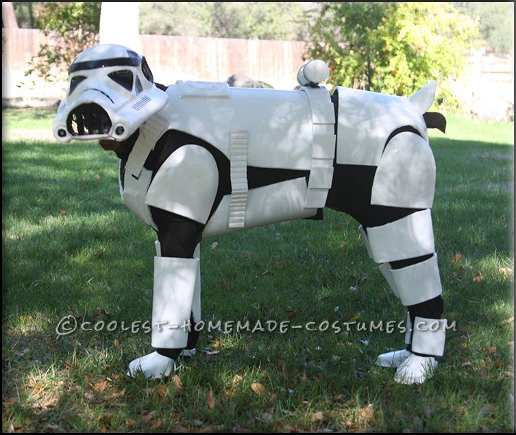 Awesome Stormtrooper Costume for a Dog - 1