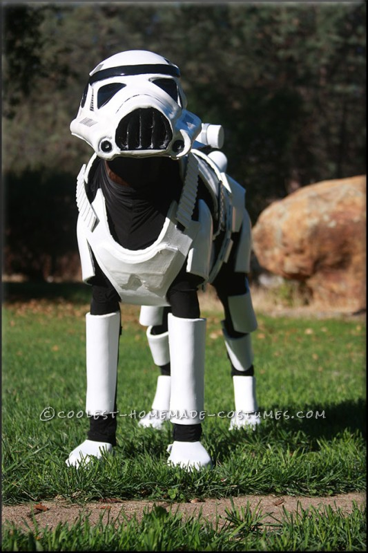 Awesome Stormtrooper Costume for a Dog - 3