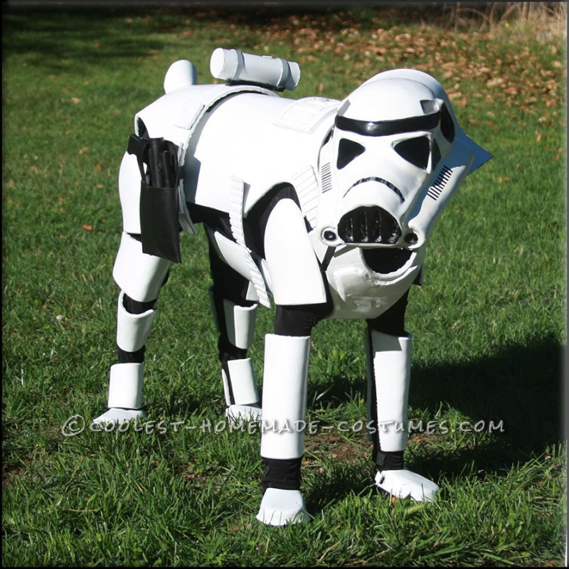 Awesome Stormtrooper Costume for a Dog - 4