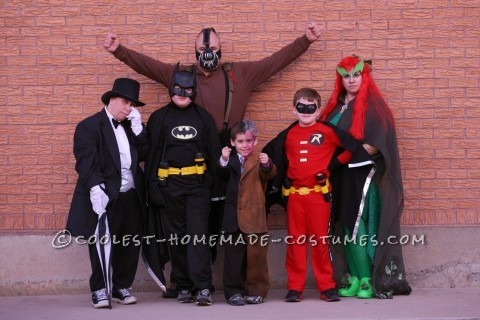 Cool Batman, Robin and Villain Family Costumes