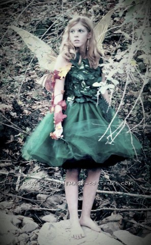 Beautiful Tween Fairy Costume