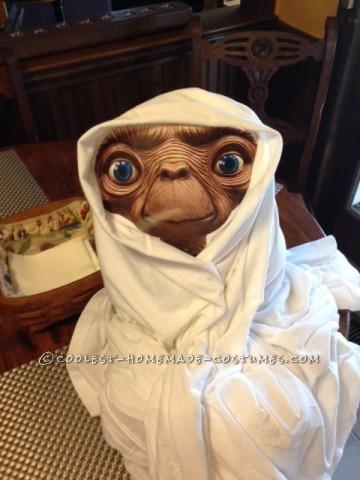 Cool No-Sew Costume Idea: Bringing ET back to Life