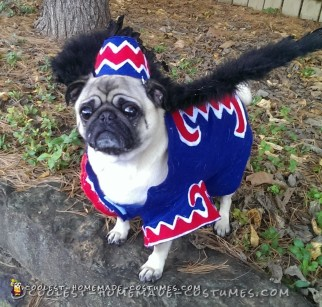 Coolest Flying Monkey Dog Costume
