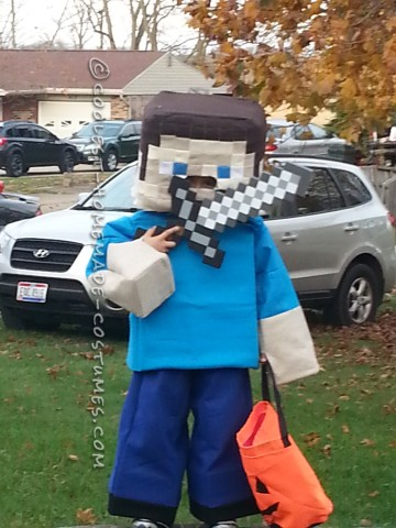Coolest Minecraft Steve Costume Ever