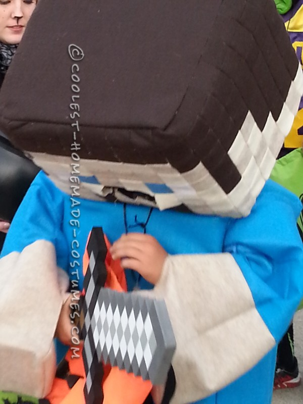 Coolest Minecraft Steve Costume Ever - 1