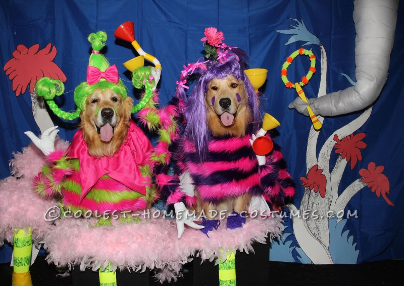 "Cutest Whos from ""Horton Hears a Who"" Dog Costumes"