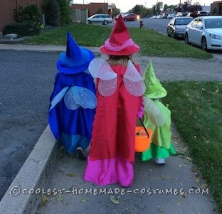 Cutest Flora, Fauna, and Merryweather Fairy Costumes - 1