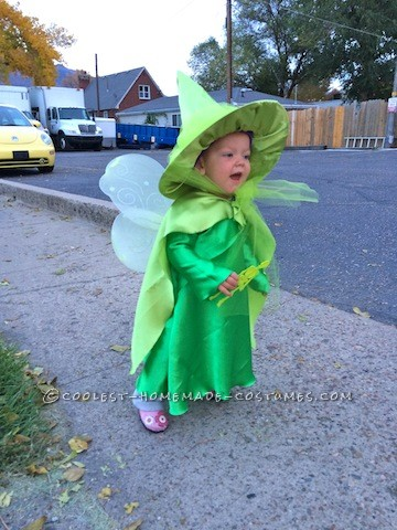 Cutest Flora, Fauna, and Merryweather Fairy Costumes - 3