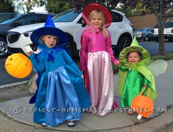 Cutest Flora, Fauna, and Merryweather Fairy Costumes