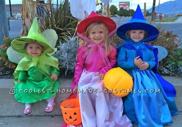 Cutest Flora, Fauna, and Merryweather Fairy Costumes - 2