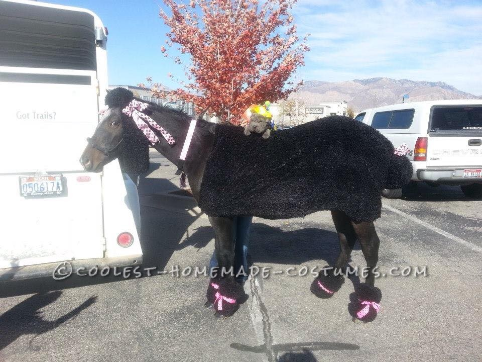 Giant Poodle Costume for a Horse!