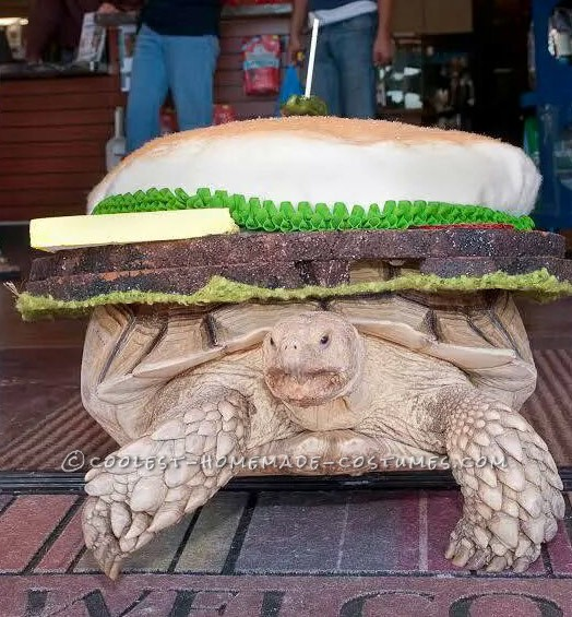 Slow Cookin' Turtle Burger Costume