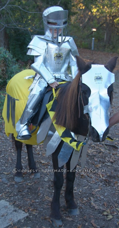 Knight in Shiny Armour Costume