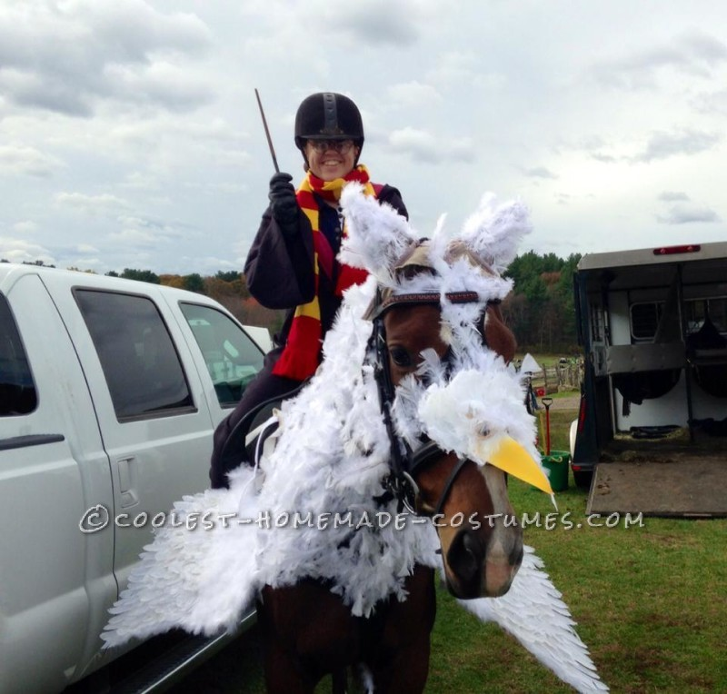 Lina the Awesome Horse as Buckbeak the Hippogriff