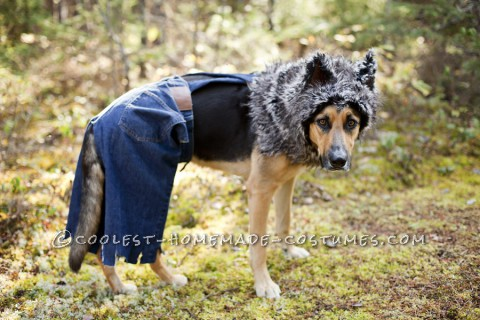 Little Bad Wolf Costume for a Dog
