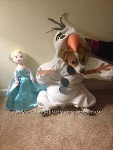 Funny Dog Costume: Mochi  as Olaf from Frozen